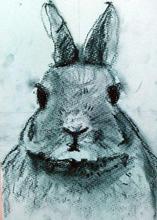 小学生クラス4月2回目・木炭画「うさぎ」