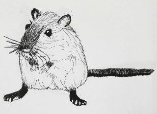 小学生クラス12月1回目・ペン画